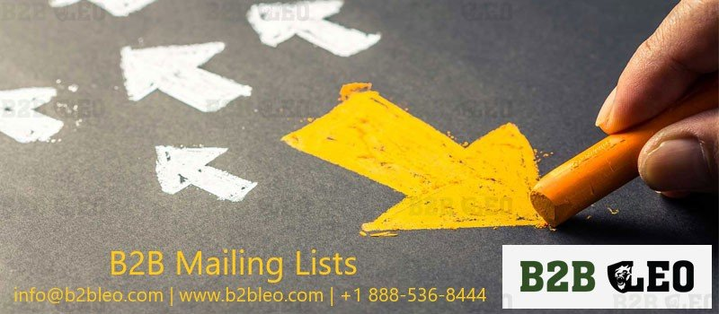 B2B Mailing Lists-Leo Data Services
