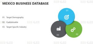 Mexico-Business-Database