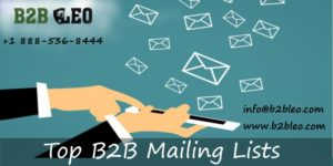 Top B2B Email List-B2B Leo