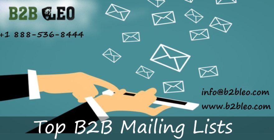 Top B2B Email List-B2B Leo